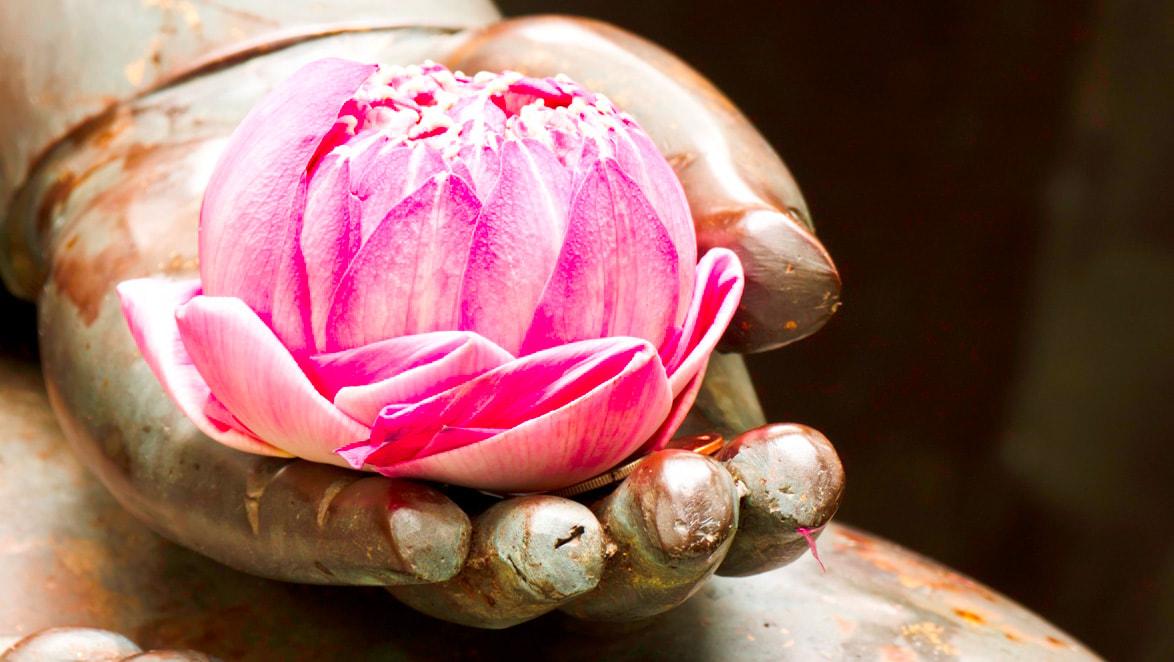 Healing-Praktijk Sofie